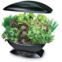 AeroGarden indoor herb garden