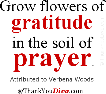Grow flowers of gratitude in the soil of prayer. Attributed to Verbena Woods